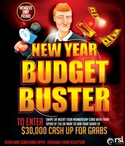 NY Budget Buster_WEB JPEG